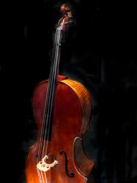 Antonio Stradivarius, Violoncello Quintet Medici made in Cremona for Grand Duke Ferdinand in 1690, Museum of Musical Instruments of the Accademia Gallery in Florence Italy